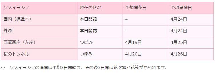 弘前さくら開花状況2017