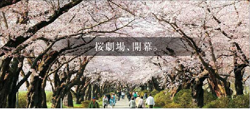 北上展勝地桜まつり2017