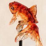 ヤマダ電機CM金魚アメの値段は?買えるお店と通販サイトも調査!