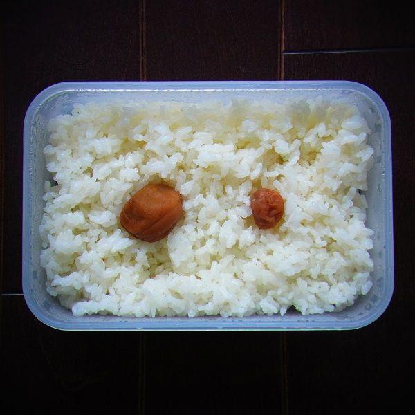 梅干し食べ比べ弁当