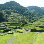 人生の楽園に福岡のうきは市が!フルーツ狩りや温泉について調査!