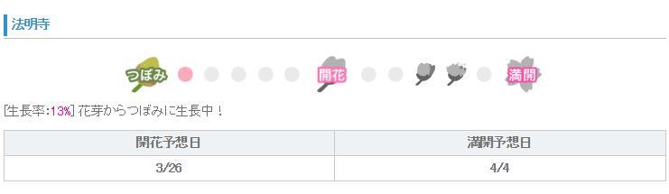 法明寺桜2017回かと満開予想