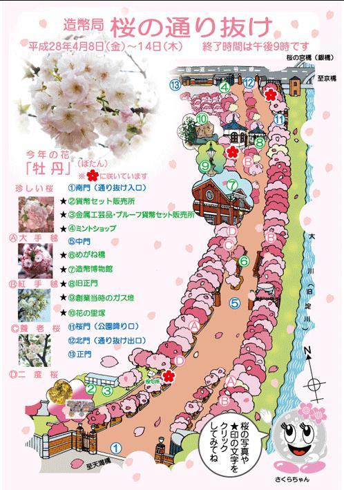 造幣局桜の通り抜けマップ