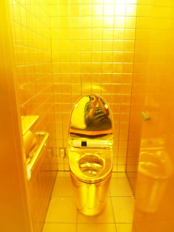 王家のトイレ