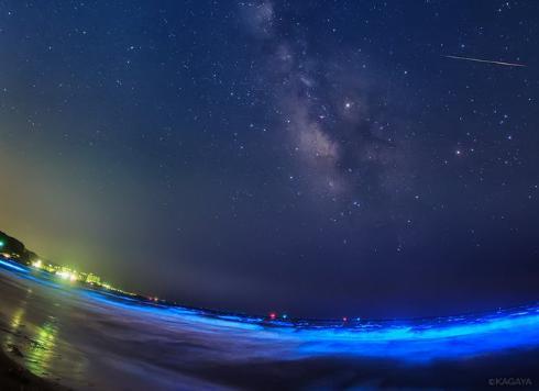 夜光虫の画像まとめ!どこの海岸でいつまで見られる?鎌倉以外でも?