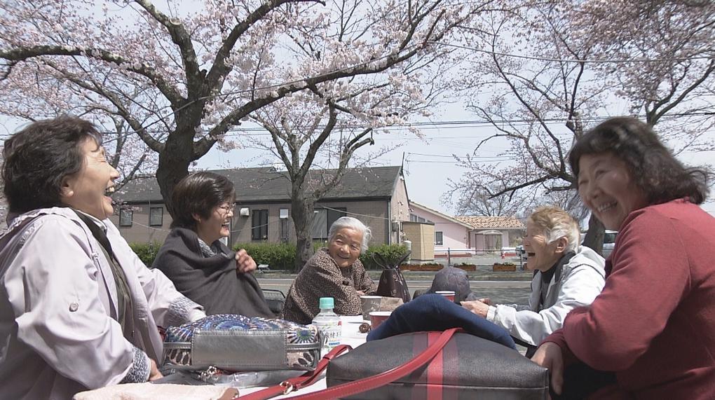 福島桜まつり04