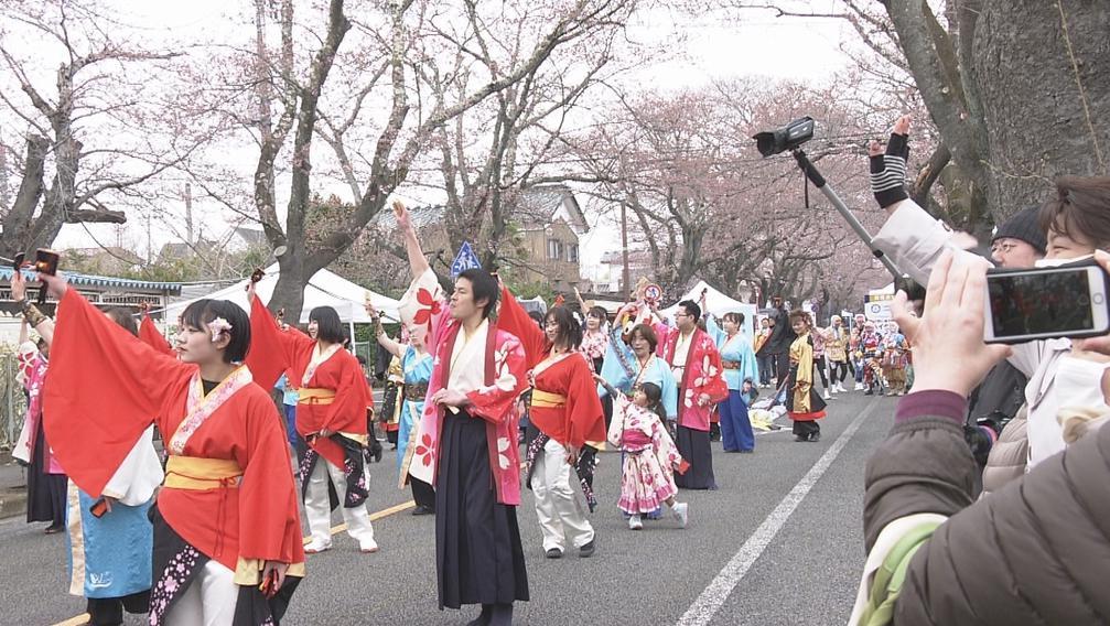 福島桜まつり01