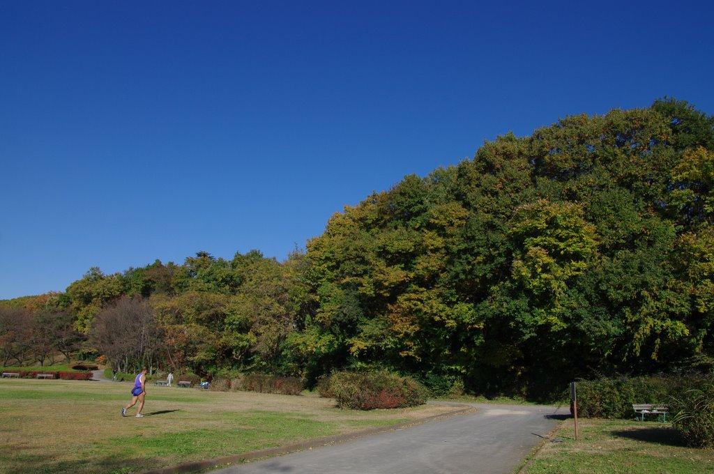 カニザカ公園