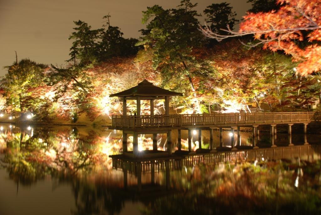 東公園 池