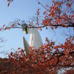万博公園紅葉画像