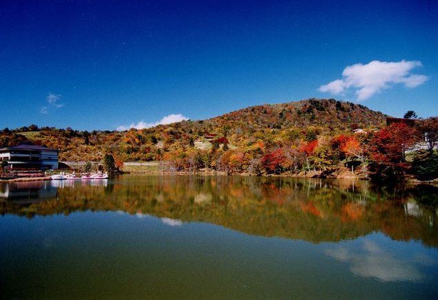 茶臼山高原紅葉