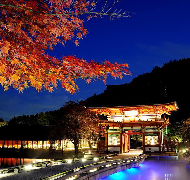箕面・勝尾寺の紅葉2018見頃とライトアップは?アクセスと駐車場も調査