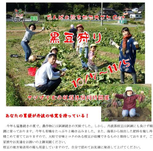 たんばJUNちゃん農園収穫体験チラシ