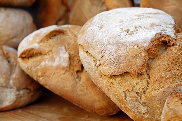 「めしとつけもんとパンと」篠山市・廃校カフェの営業時間とメニューや口コミ!
